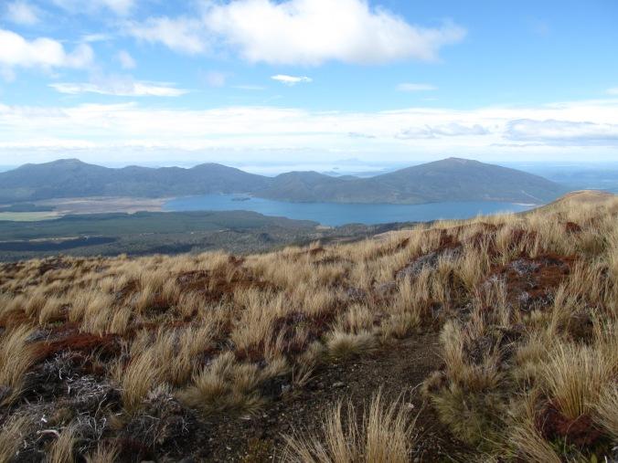 Ausblick auf Lake Taupo.